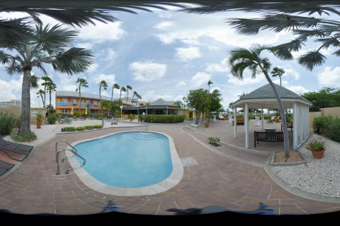Pool panorama shot with palm trees